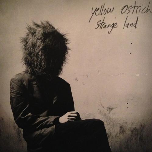 Yellow Ostrich